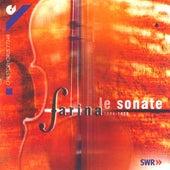 FARINA, C.: Sonatas by Barbara Noeldeke