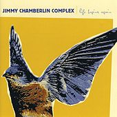 Life Begins Again by Jimmy Chamberlin Complex