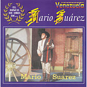 Play & Download El Disco de Oro De ... Mario Suarez by Mario Suarez | Napster