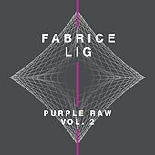 Purple Raw, Vol. 2 by Fabrice Lig