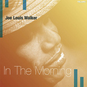 Play & Download In the Morning by Joe Louis Walker | Napster