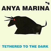 Play & Download Tethered to the Dark by Anya Marina | Napster