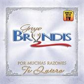 Por Muchas Razones Te Quiero by Grupo Bryndis