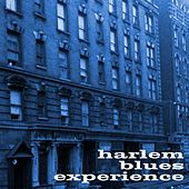 Harlem Blues Experience by Various Artists
