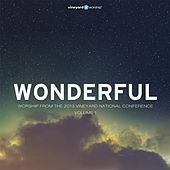 Play & Download Wonderful: Worship from the 2013 Vineyard National Conference, Vol. 1 by Vineyard Worship | Napster