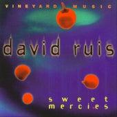 Sweet Mercies by David Ruis