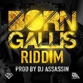 Born Gallis Riddim by Various Artists