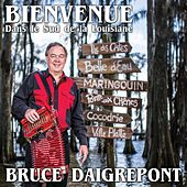 Play & Download Bienvenue dans le sud de la Louisiane by Bruce Daigrepont | Napster