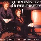 Play & Download Weil ich dich immer noch lieb' by Brunner & Brunner | Napster