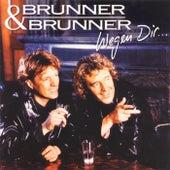 Wegen Dir by Brunner & Brunner