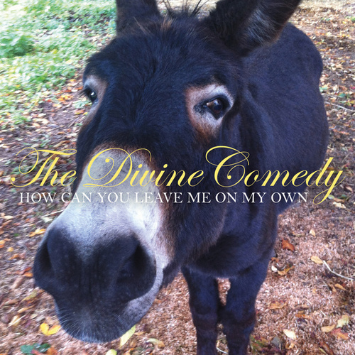 Play & Download How Can You Leave Me On My Own by The Divine Comedy | Napster