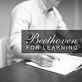 Beethoven for Learning – Study with Classical Instruments, Exam Study, Brain Training, Study Help with Classical Music by Best Study Music Collection Studying Music