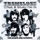Play & Download What a State I'm In: The Psych-Pop Sessions by The Tremeloes | Napster