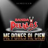 Play & Download Me Pones al Cien by Banda Pelillos | Napster
