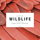 Play & Download Wildlife - Unique Music Selection, Vol. 9 by Various Artists | Napster