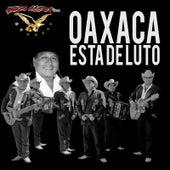 Play & Download Oaxaca Esta de Luto by Grupo Accion Oaxaca | Napster