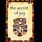 The Secret of Joy by Andrea Centazzo