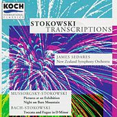Play & Download Stokowski Transcriptions by Leopold Stokowski | Napster
