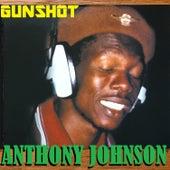 Play & Download Gunshot by Anthony Johnson   Napster