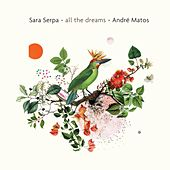 All the Dreams by Sara Serpa
