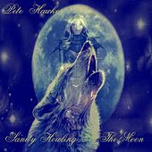 Play & Download Sanity Howling at the Moon - Single by Pete Hawkes | Napster