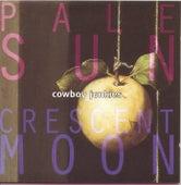 Pale Sun, Crescent Moon by Cowboy Junkies