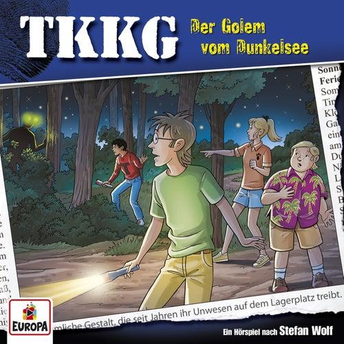 198/Der Golem vom Dunkelsee von TKKG