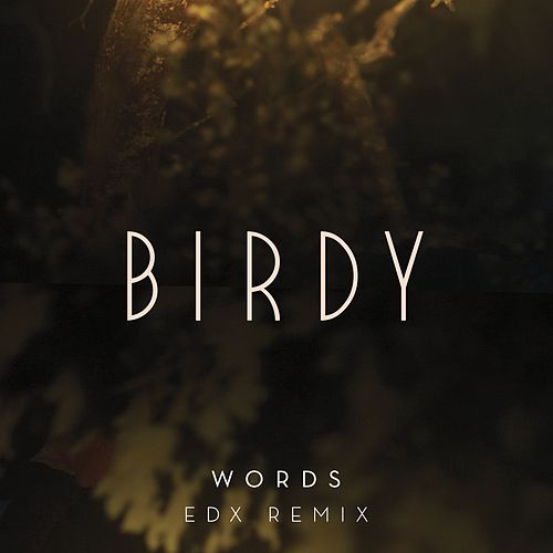 Words (EDX Remix) von Birdy