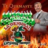 Play & Download Te Quemaste by La Arrolladora Banda El Limon | Napster