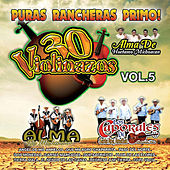 30 Violinazos, Vol. 5 by Various Artists