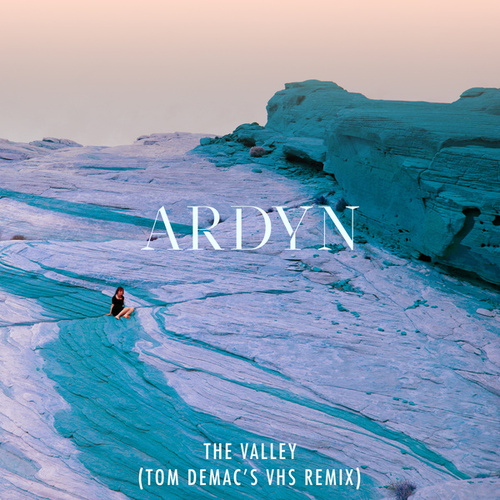 The Valley (Tom Demac's VHS Remix) by Ardyn
