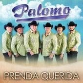 Play & Download Prenda Querida by Palomo | Napster