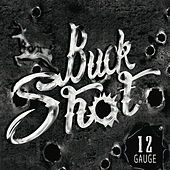 Play & Download 12 Gauge by Buckshot | Napster