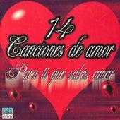 Play & Download 14 Canciones de Amar - Para Ti Que Sabes Amar by Various Artists | Napster