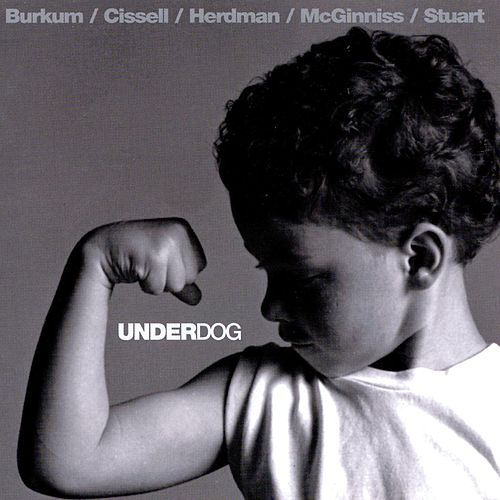 Play & Download Underdog by Audio Adrenaline | Napster