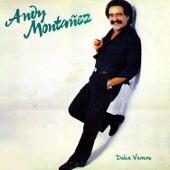 Dulce Veneno by Andy Montañez