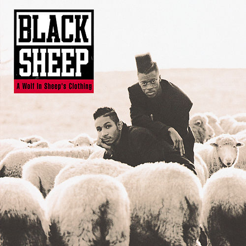 A Wolf In Sheep's Clothing by Black Sheep