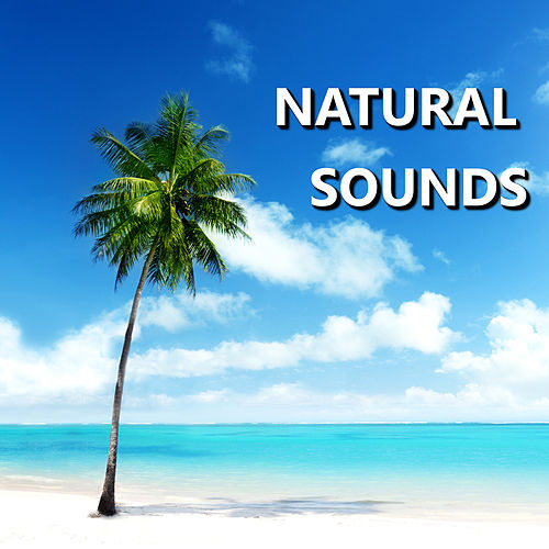 Play & Download Natural Sounds by Natural Sounds   Napster