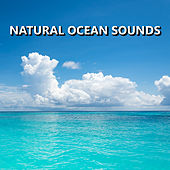 Play & Download Natural Ocean Sounds by Natural Sounds | Napster