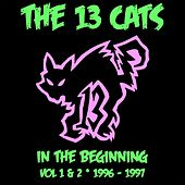 In the Beginning, Vol. 1 & 2 by 13 Cats