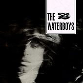 Play & Download The Waterboys by The Waterboys | Napster
