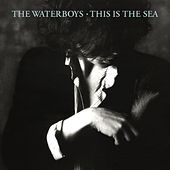 Play & Download This Is the Sea (Deluxe Version) by The Waterboys | Napster