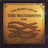 The Secret Life of The Waterboys (1981-1985) von The Waterboys