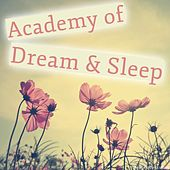 Play & Download Academy of Dream & Sleep by Various Artists | Napster