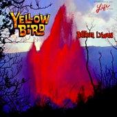 Yellow Bird by Arthur Lyman
