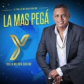 Play & Download La Más Pega (El Yao la Melodia Sublime) by Yao | Napster