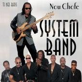 Ti nès bass (Nou chofé) by System Band