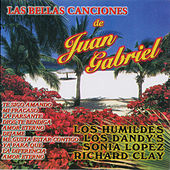 Las Bellas Canciones de Juan Gabriel by Various Artists