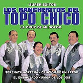 Play & Download Super Exitos by Los Rancheritos Del Topo Chico | Napster