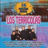 Play & Download 10 Grandes Exitos by Los Terricolas | Napster